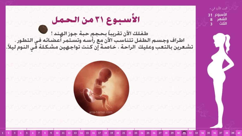الأسبوع 31 من الحمل
