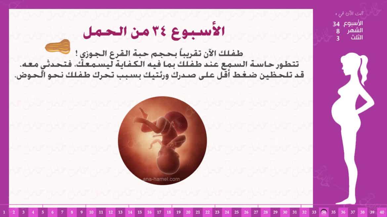 الأسبوع 34 من الحمل