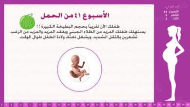 Photo of الأسبوع 41 من الحمل : إرشادات وحقائق