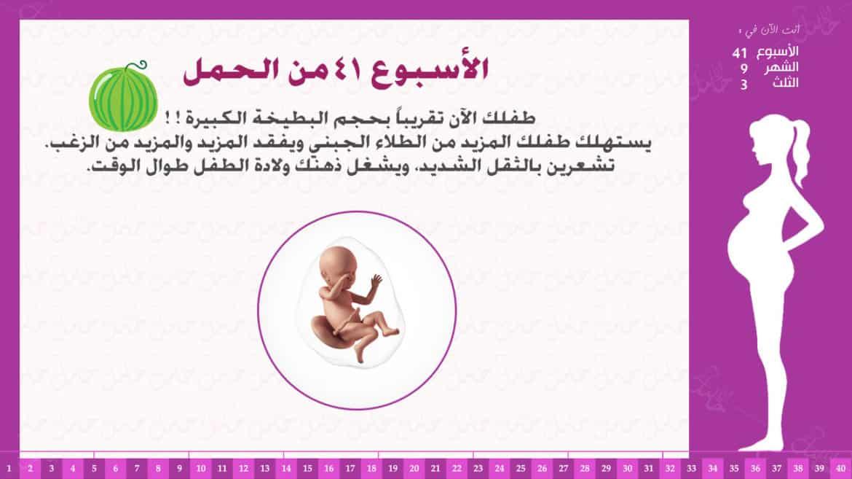 الأسبوع 41 من الحمل