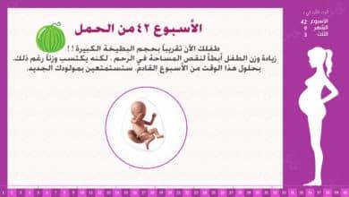Photo of الأسبوع 42 من الحمل : إرشادات وحقائق