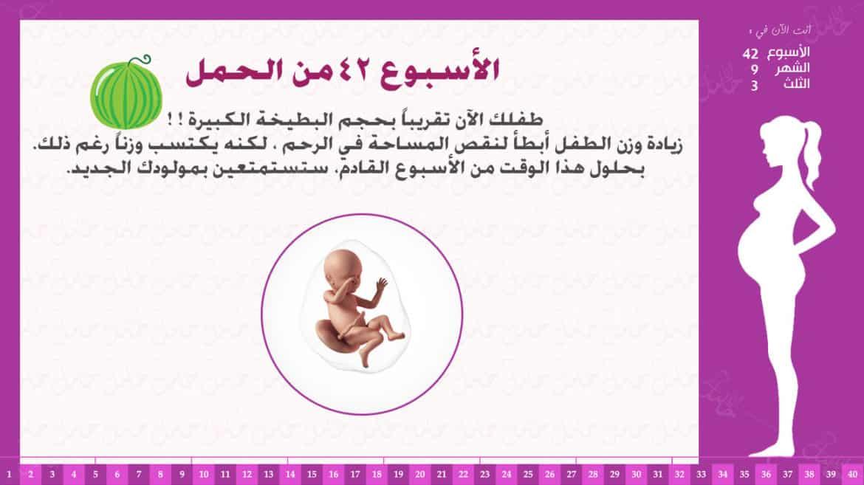 الأسبوع 42 من الحمل