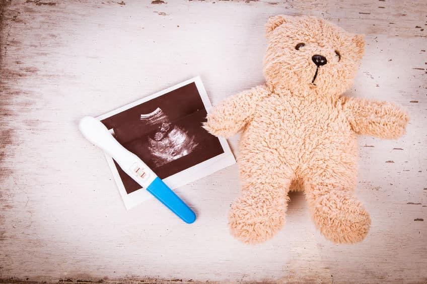 الجنين في خامس عشر أسبوع من الحمل