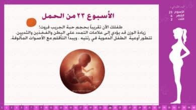 Photo of الأسبوع 23 من الحمل : إرشادات وحقائق