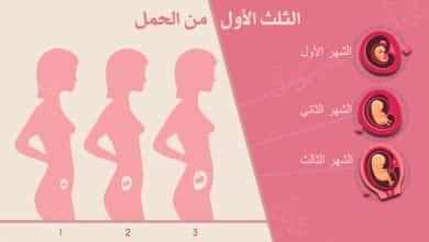 Photo of الثلث الأول من الحمل : ما يحصل لك وللجنين في أول ثلث؟