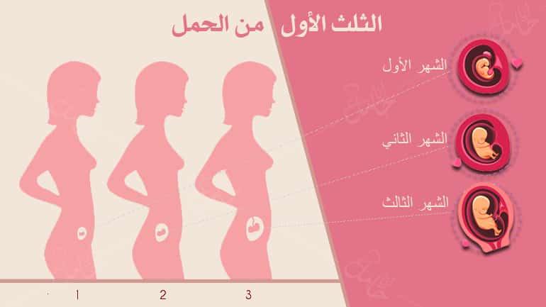 أعراض الثلث الاول من الحمل -وكيف يتطور الجنين!