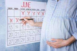 حاسبة ويليامز لتحديد موعد الولادة