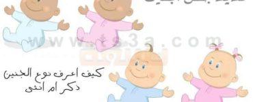 تحديد جنس الجنين او نوع الجنين كيف اعرف نوع الجنين ذكر ام انثى