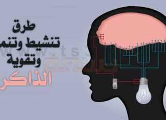 الذاكرة تقوية الذاكرة كيف تقوي الذاكرة