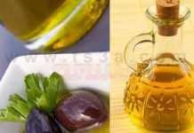 فوائد الزيتون و زيت الزيتون هل تعلم ما هي فوائد زيت الزيتون