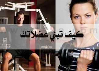 كيف تبني عضلاتك كيفية بناء العضلات