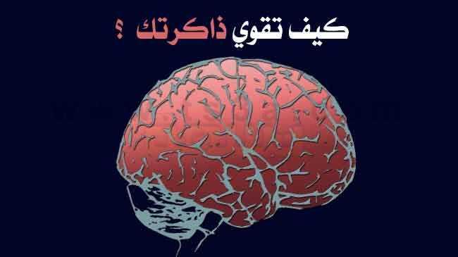 تقوية الذاكرة كيف تقوي ذاكرتك