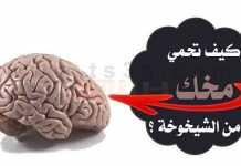 تنشيط العقل الدماغ مخك الشيخوخة