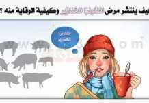 مرض انفلونزا الخنازير الخنزير