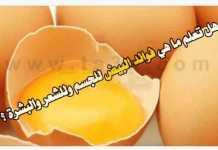 فوائد البيض للجسم للشعر للبشرة