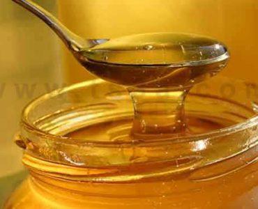 تمييز العسل النقي كيف تعرف العسل الاصلي من المغشوش