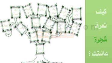 خطواتك لتتعرف على شجرة العائلة كيف تعرف شجرة عائلتك