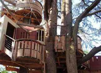 كيف تقوم ببناء منزل او بيت الشجرة