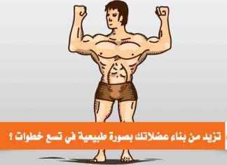 كيف تزيد من بناء عضلاتك بصورة طبيعية