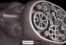 كيف تحافظ على قوة دماغك قوة الدماغ تمرينات للدماغ