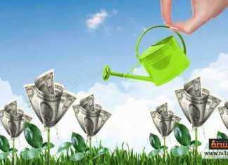 كيف تحول النقود إلى مزيد من النقود