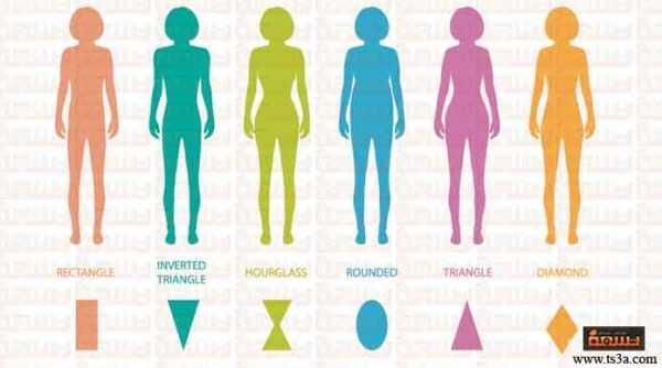 تحديد شكل الجسم