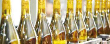 تصنيع المشروبات الكحولية