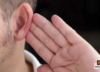 حماية حاسة السمع