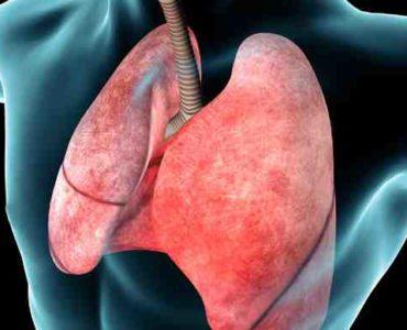 الجهاز التنفسي