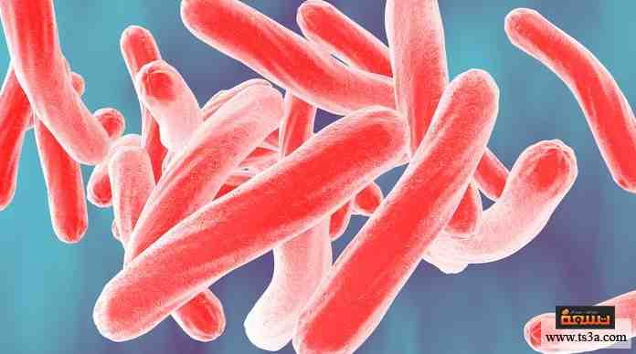 معالجة العدوى البكتيرية
