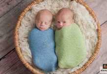 ولادة التوأم