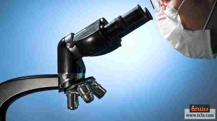 استخدام الميكروسكوب