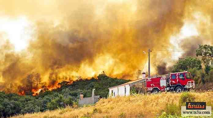 حرائق الغابات