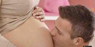 فترة الحمل