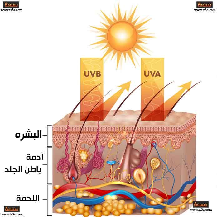 أضرار الأشعة فوق البنفسجية