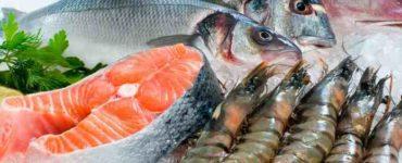 أسماك البحر