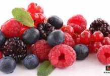 ثمار التوت
