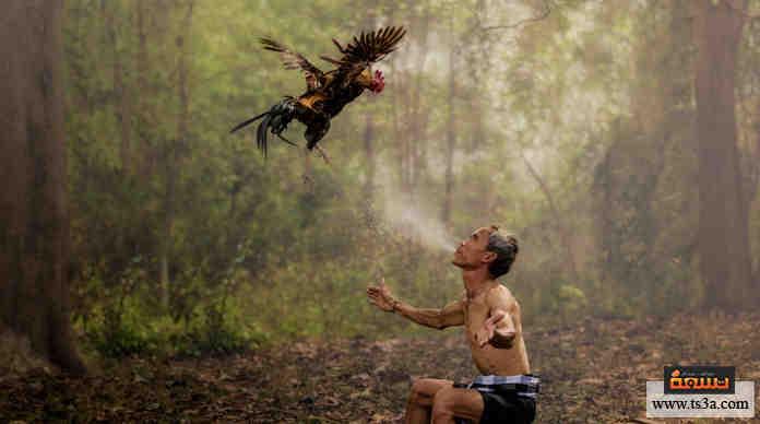الطبيعة البشرية