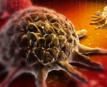 تقوية المناعة