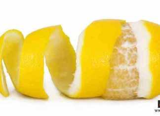 قشور الفواكه