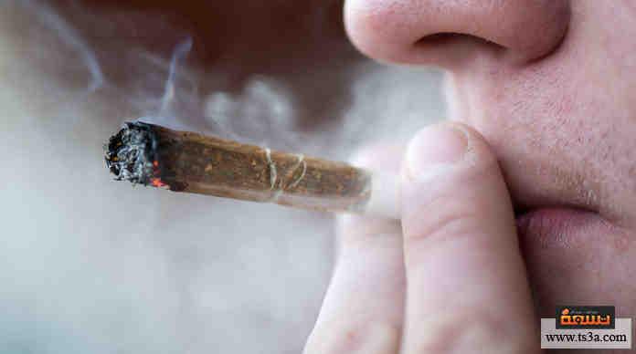 تقنين الماريجوانا