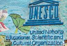 منظمة اليونسكو