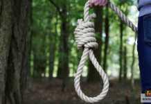 منفذي الإعدام