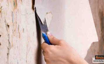 ورق الحائط