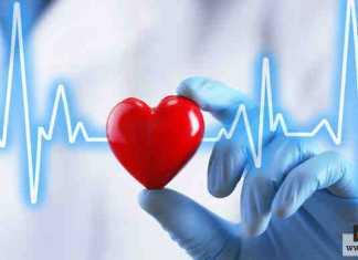 الحفاظ على القلب