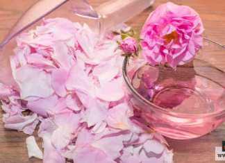 صناعة ماء الورد