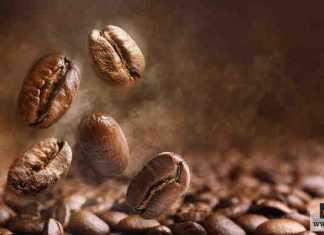 شرب القهوة