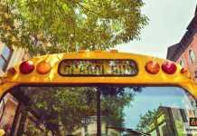 مدرسة جديدة