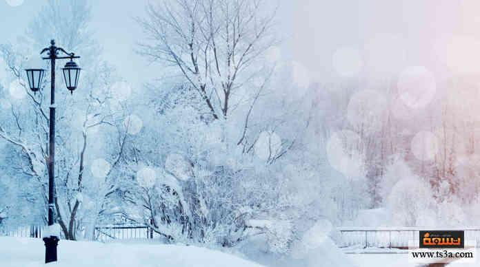 الشتاء والإبداع