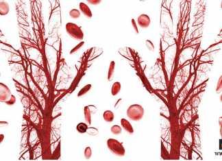 تحسين الدورة الدموية